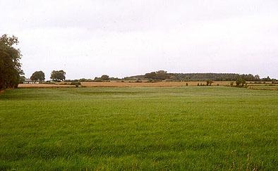 Landskabet ved Isted idag (foto: Jesper Stenild)
