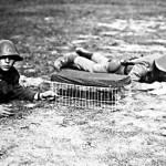 Danske soldater med brevduer på øvelse i mellemkrigstiden (foto: Tøjhusmuseet)