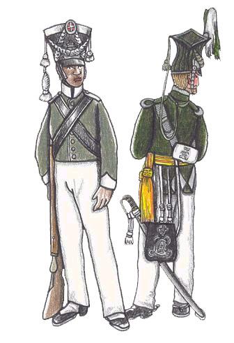 Den danske milits i Vestindien, 1829/1842