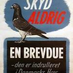 Plaket med opfordring til ikke at skyde på brevduer