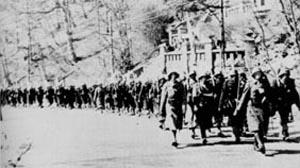 1. Kompagni af den 11. bataljon i Sverige