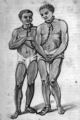 Sammenlænkede slaver (University of Virginia)